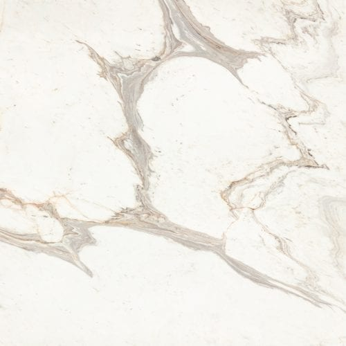 Calacatta Lucina Extra<br /> <b>Warning</b>:  Invalid argument supplied for foreach() in <b>/home/admin/web/temmer.us/public_html/wp-content/themes/temmer/taxonomy.php</b> on line <b>31</b><br /> White Marble Natural Stone
