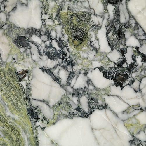 Amazonia<br /> <b>Warning</b>:  Invalid argument supplied for foreach() in <b>/home/admin/web/temmer.us/public_html/wp-content/themes/temmer/taxonomy.php</b> on line <b>31</b><br /> White Marble Natural Stone